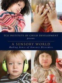 A Sensory World
